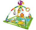 Fisher-Price Baby Gear - Activity Center Rainforest Preisvergleich