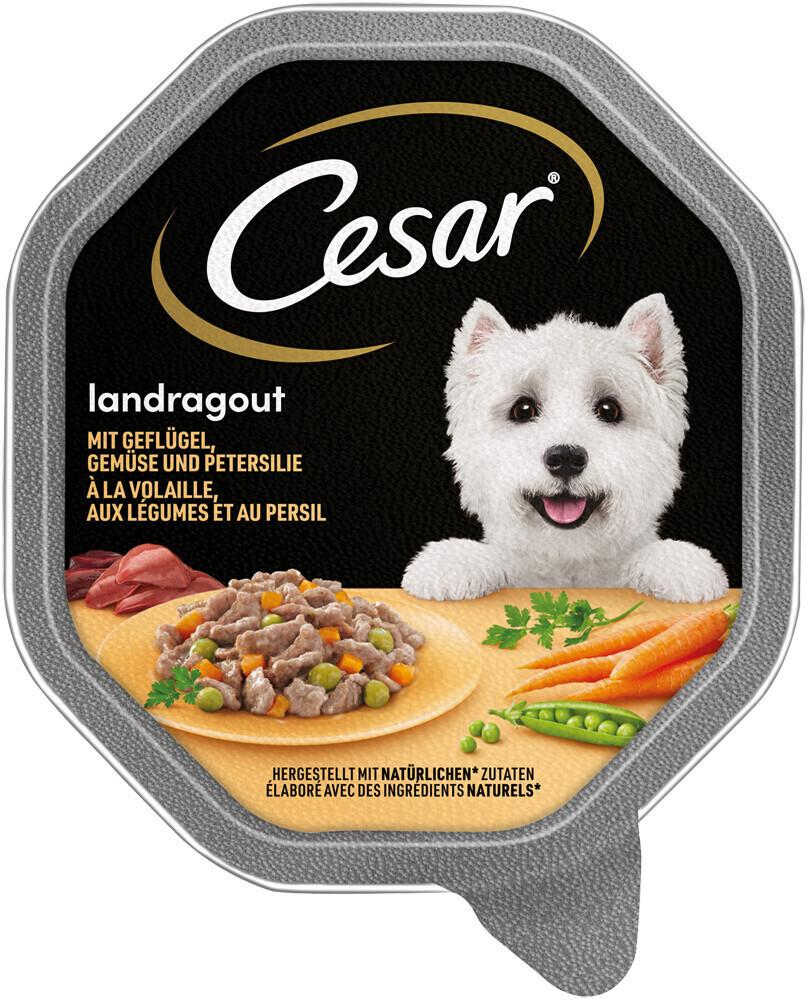 Image of Cesar Pollo e verdurine in una deliziosa salsa (150 g)