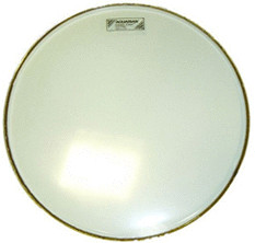 Image of Aquarian Classic Clear 14""