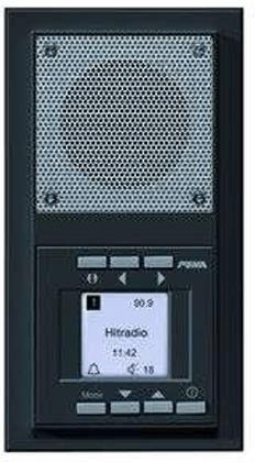 Peha Unterputz-Radio (anthrazit, 20.485.64)