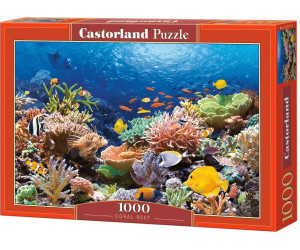 Image of Castorland Coral Reef Fishes