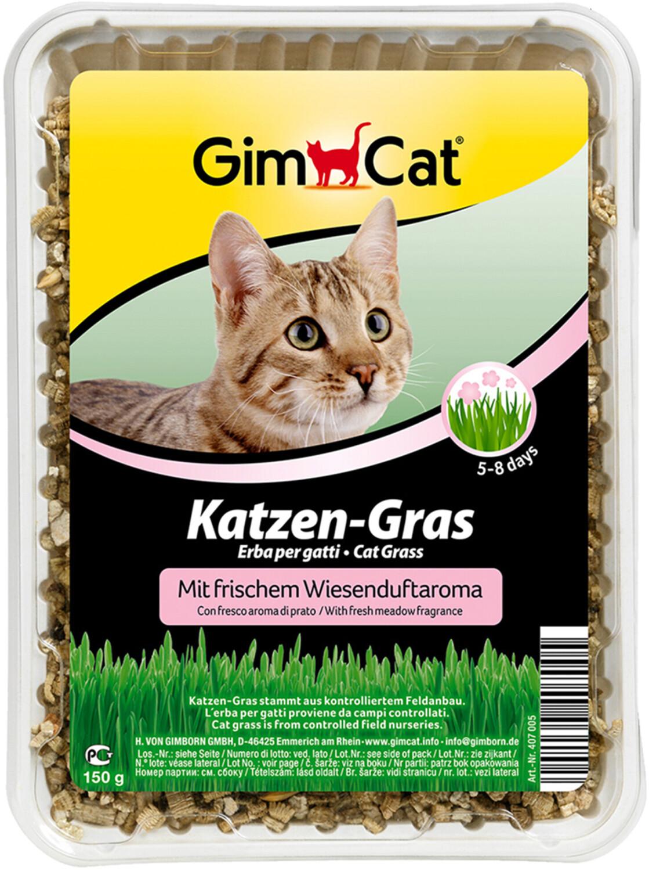 Gimpet Katzen Gras (150 g)