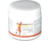glucosamin 500