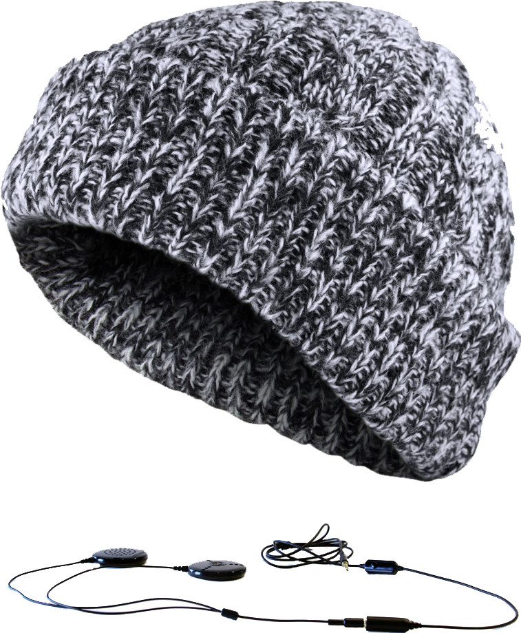 Image of Aerial7 Sound Disk Beanie