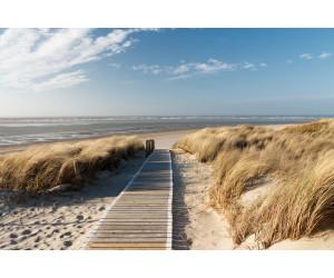 PaperMoon Dunes in Langeoog 350 x 260 cm