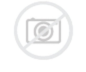 Point S Summerstar Van 3 195/65 R16 104/102R