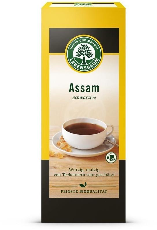 Lebensbaum Assam (20 Stk.)