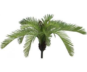 Europalms Cycas fern - 50 cm