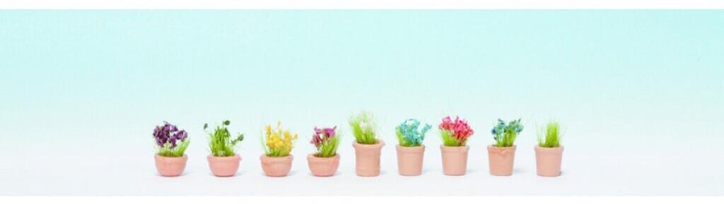 Noch Blumen in kleinen Blumentöpfen (14084)
