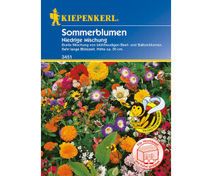 Kiepenkerl Blumenmischung Niedrige Sommerblumen
