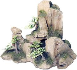 Kerbl Fels mit Pflanzen