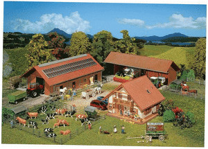 Faller Landwirtschaftlicher Betrieb (130520)