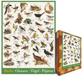 Eurographics Puzzles Vögel (1.000 Teile)
