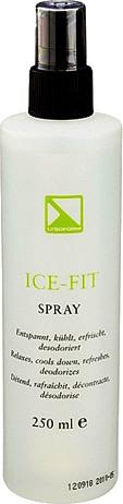 Lysoform Ice Fit Spray (250 ml)