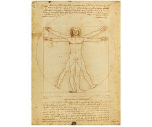 Clementoni Leonardo da Vinci - Vitruvian Man