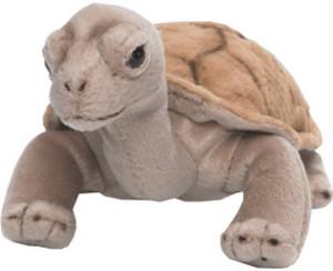 WWF Anna Club - Landschildkröte 20 cm