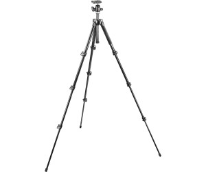 Manfrotto MK 293A4 + A0RC2