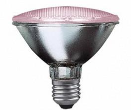 Paulmann Halogen Alu Pflanzenlampe PAR30 75W E2...