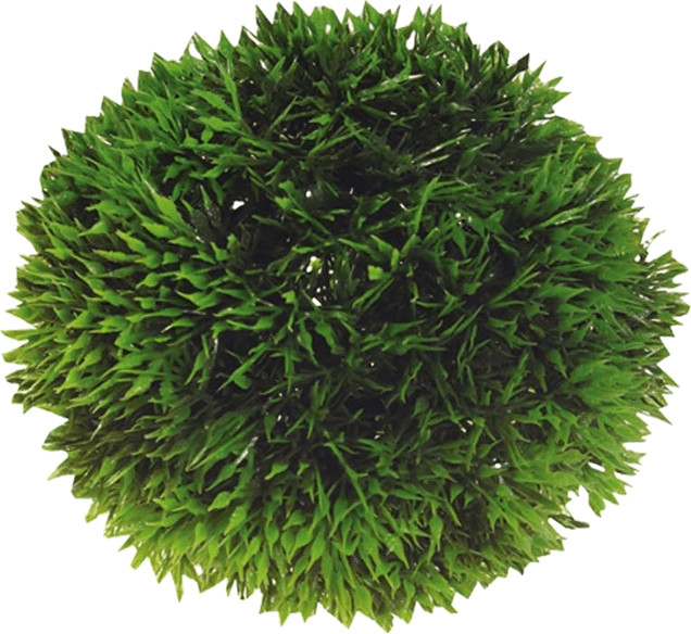 Hobby Plant Ball 9cm