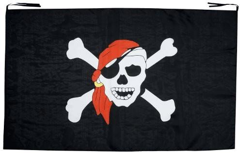 Widmann Piratenfahne