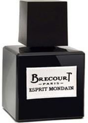 Brecourt Esprit Mondain Eau de Parfum (100ml)