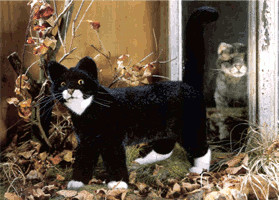 Kösener Katze stehend 40 cm