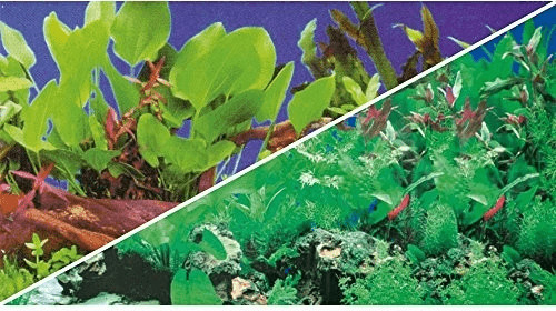 Hobby Rückwand Pflanzen 1/5 120x50cm