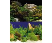 aquarium 100x50