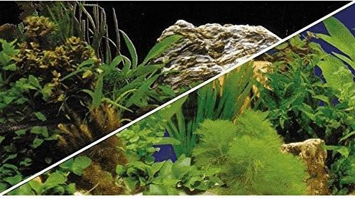 Hobby Rückwand Pflanzen 2/7 120x50cm
