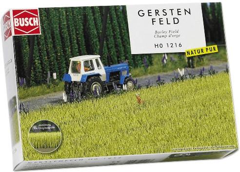 Busch Gerste (1216)