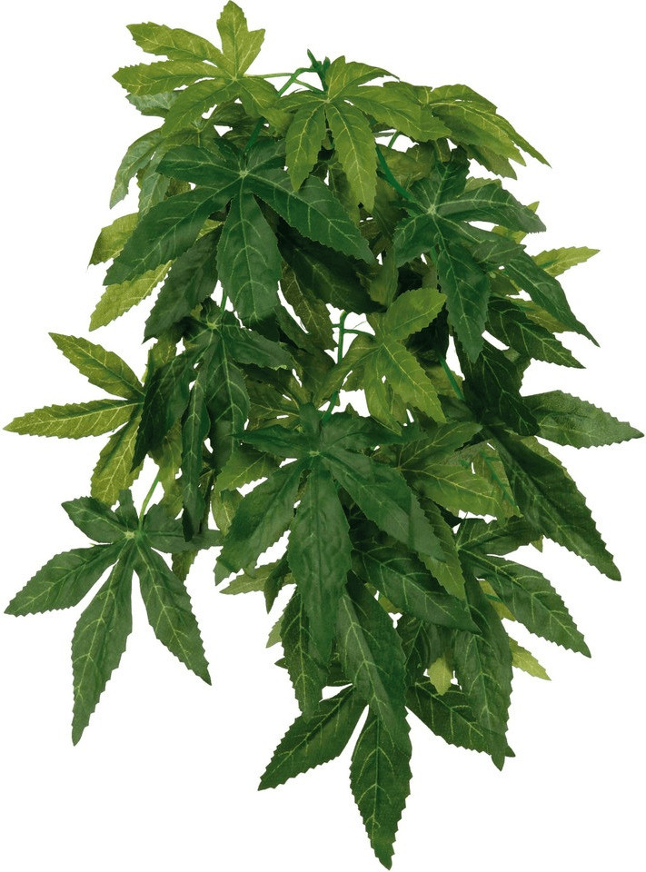 Trixie Reptiland Seiden-Hängepflanze Abutilon ø20×50cm