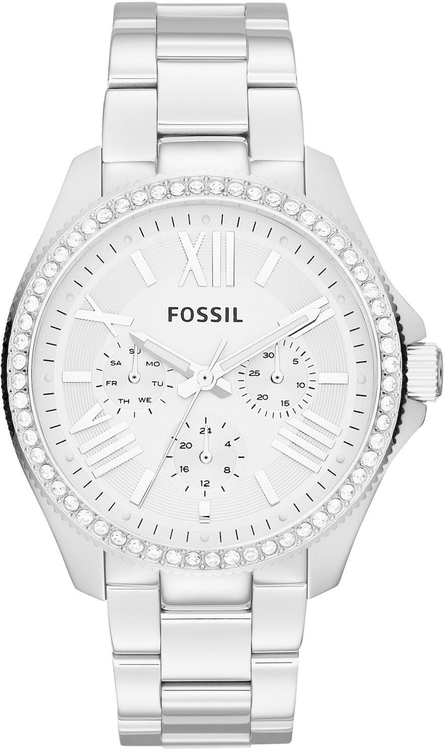Fossil Cecile (AM4481)