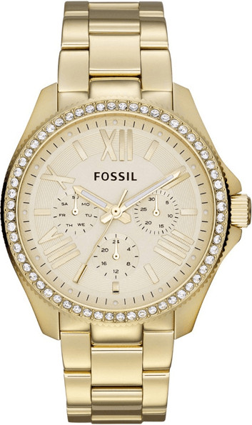 Fossil Cecile (AM4482)