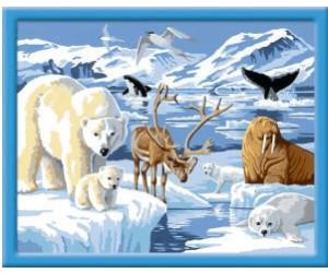 Ravensburger Malen Nach Zahlen Classic Tiere Der Arktis Ab 15 00
