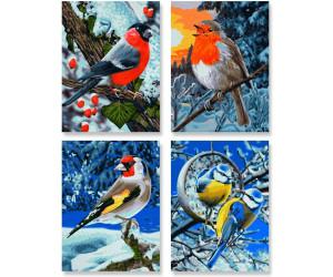 Schipper Malen Nach Zahlen Wintervögel Ab 2399 Preisvergleich