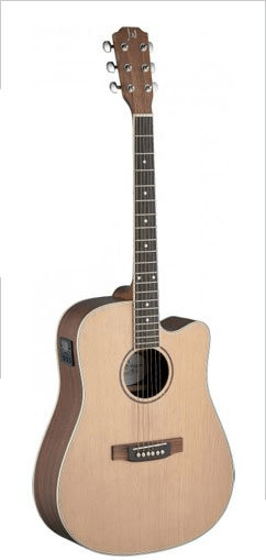 James Neligan Guitars Asyla ASY-DCE