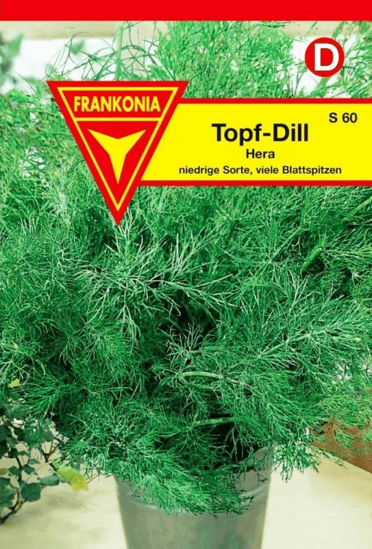 Frankonia Topf-Dill Hera