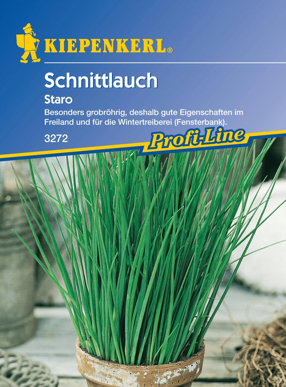 Kiepenkerl Schnittlauch Staro