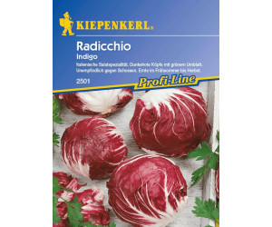 Kiepenkerl Radicchio-Samen Indigo