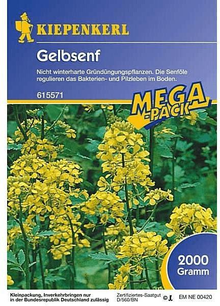 Kiepenkerl Gelbsenf 2 kg