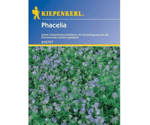 kiepenkerl phacelia 50g ab 1 99 preisvergleich bei. Black Bedroom Furniture Sets. Home Design Ideas