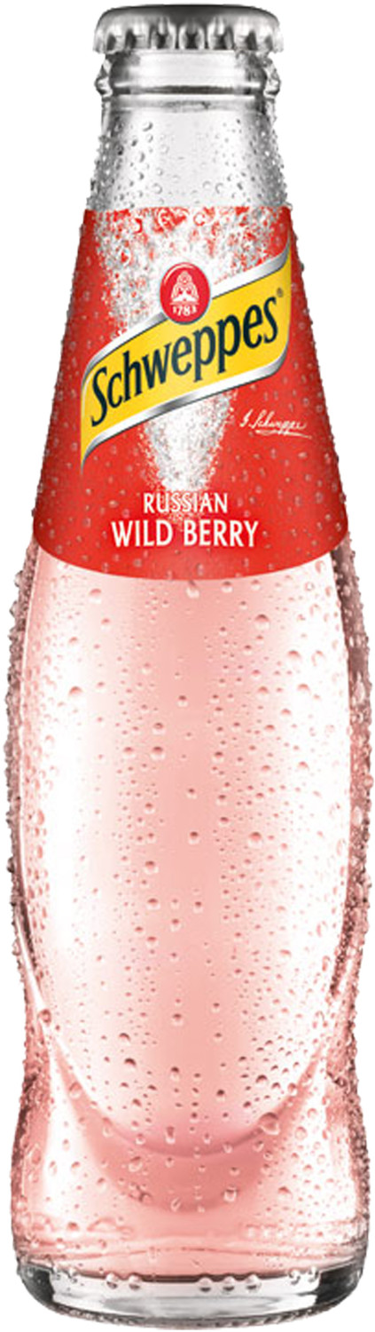 Schweppes Russian Wild Berry 0,2l