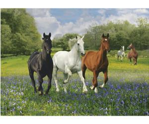 Clementoni Horses (1000 pieces)
