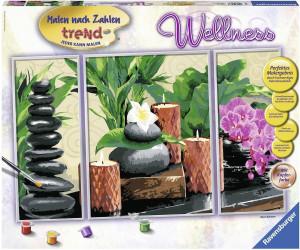 Ravensburger Malen Nach Zahlen Trend Wellness Ab 2090