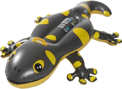 Royalbeach Gecko