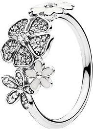 Pandora Blumen-Bouquet (190984CZ-50)