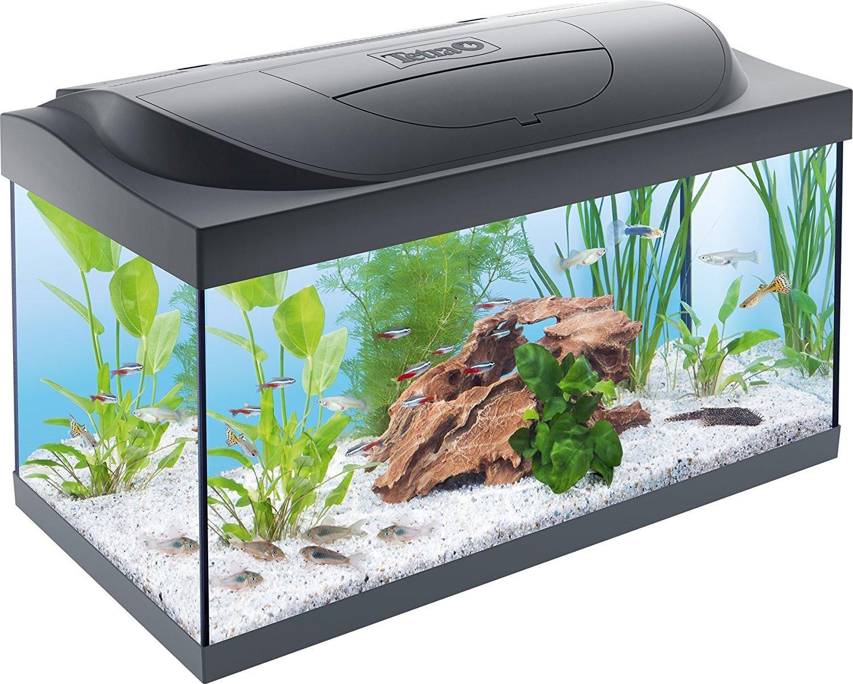 Tetra Tetra Starter Line LED Aquarium