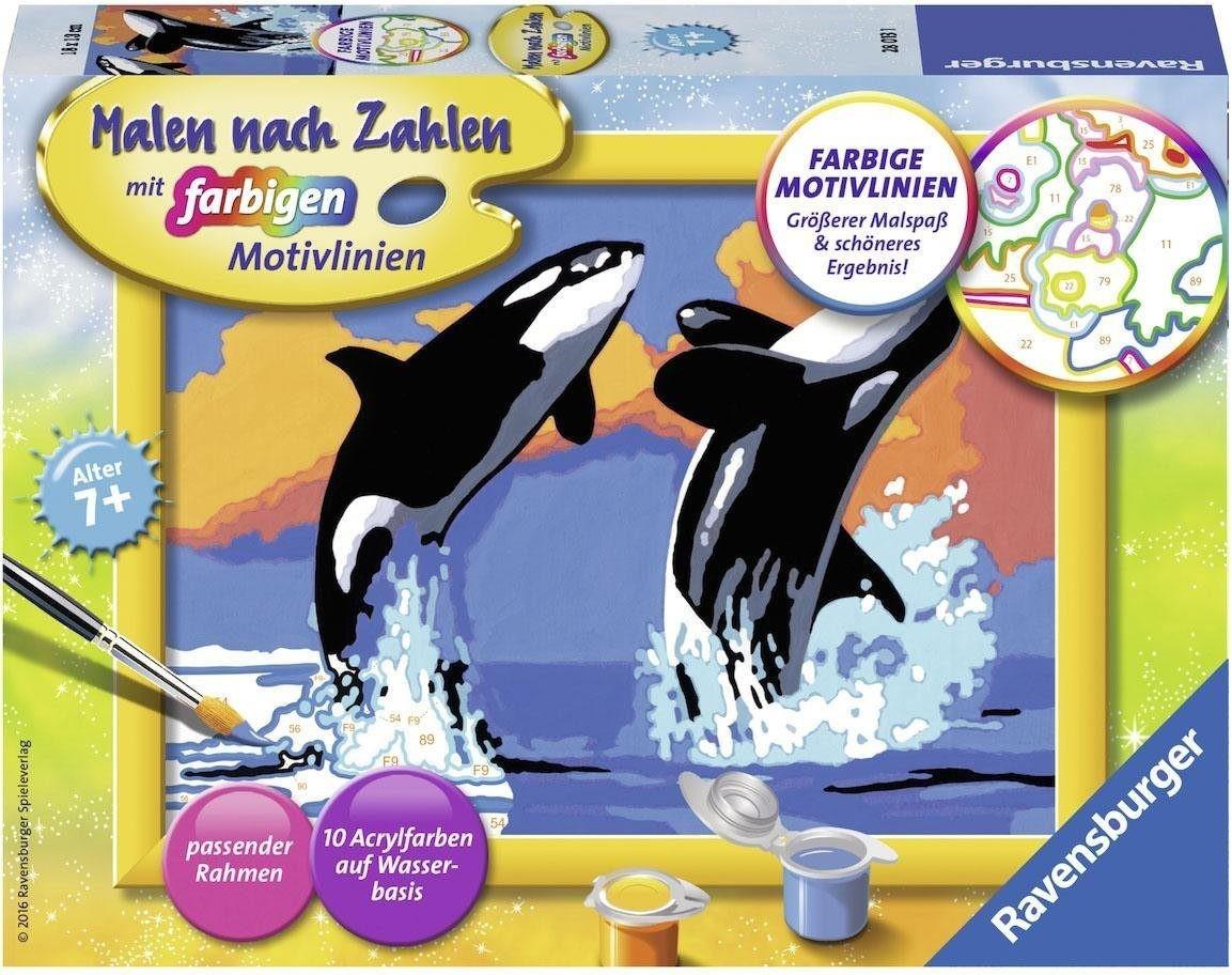Ravensburger Malen nach Zahlen Verspielte Orcas