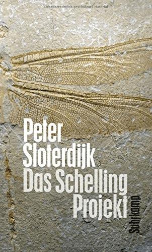 Das Schelling-Projekt: Bericht (Peter Sloterdij...