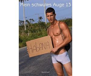 Mein schwules Auge 13: Das Jahrbuch der schwulen Erotik [Taschenbuch]
